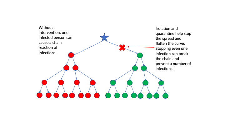 Diagram of COVID-19 chain reaction model